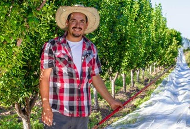 El 15 se mayo se festeja el Día del Trabajador Agrícola y la fecha se asocia a la celebración de San Isidro Labrador, patrono de quienes se dedican a la agricultura -el sector más importante de la economía de nuestro país-.
