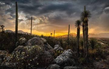 Vista general del valle de Tehuacán-Cuicatlán