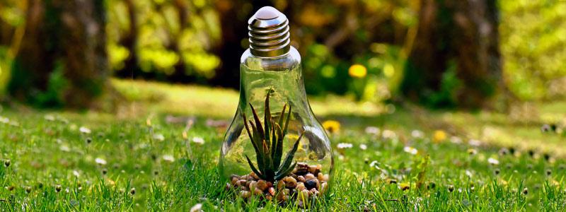 Convocatoria abierta al Fondo Sectorial para la Investigación Ambiental 2018