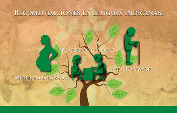 Imagen de las recomendaciones en Lenguas Indígenas