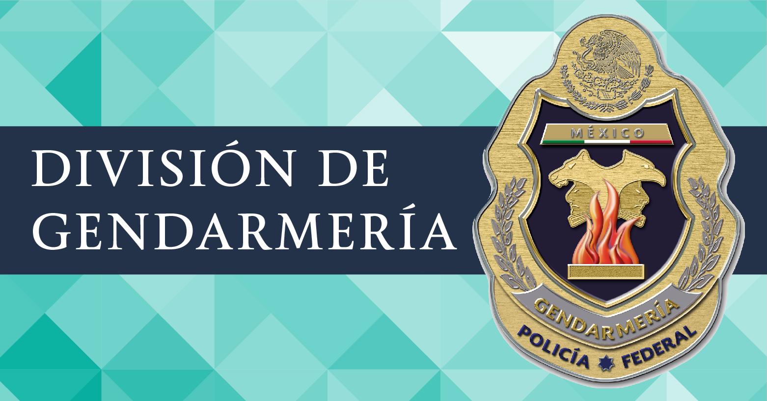 A través de la División de Gendarmería, la Policía Federal implementó un modelo de operación y gestión policial cercano a la sociedad.