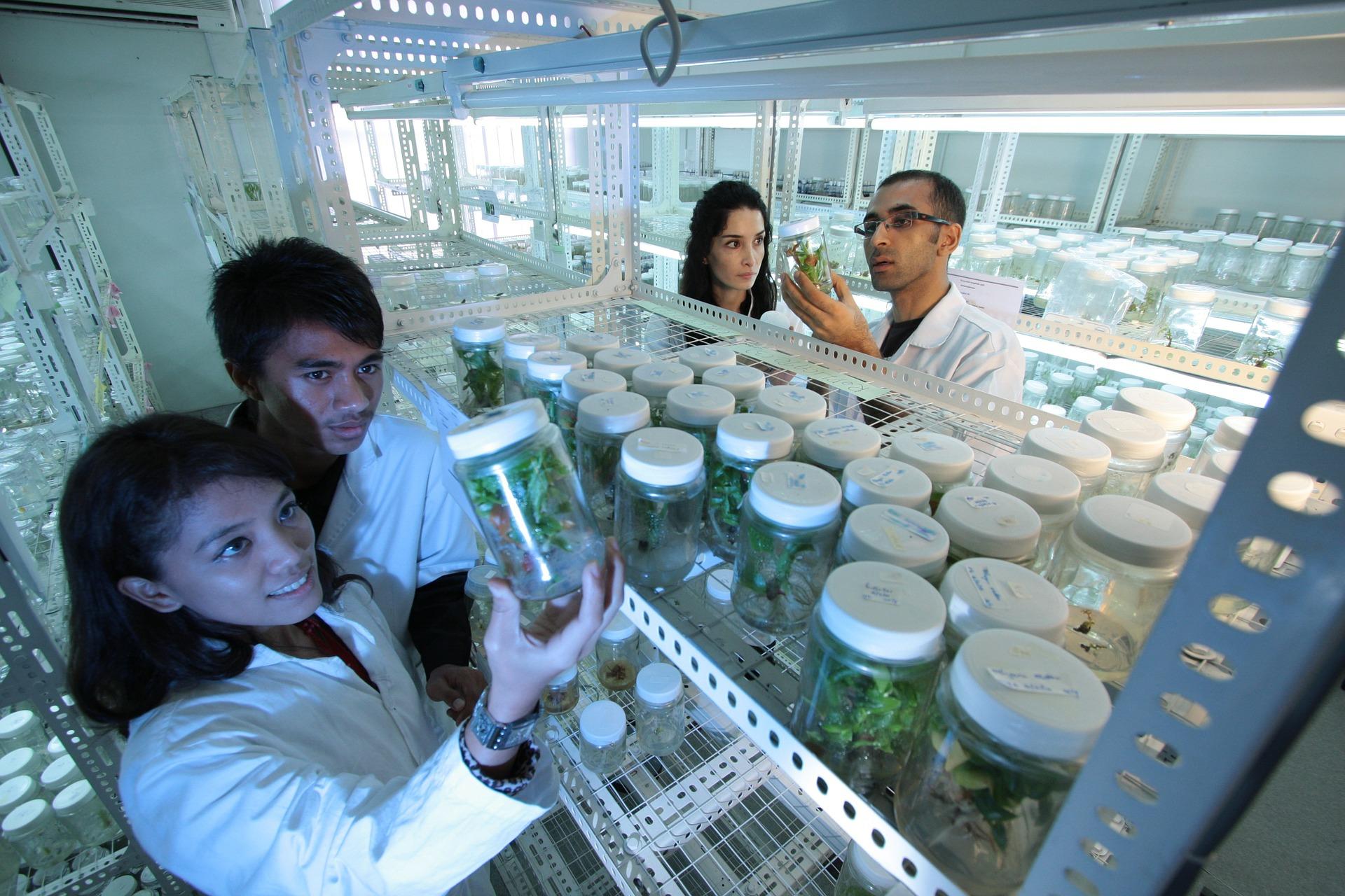 Frascos con plantas y Científicos