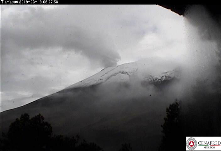 En las últimas 24 horas, por medio de los sistemas de monitoreo del volcán Popocatépetl, se identificaron 41 exhalaciones de baja intensidad acompañadas de vapor de agua y gas, 5 sismos volcanotectónicos y 12 minutos de tremor armónico.