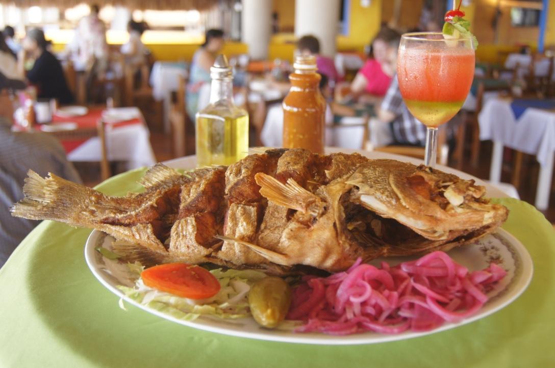 Esta pesquería ha sido de gran relevancia social y económica para las comunidades pesqueras de la Península de Yucatán.