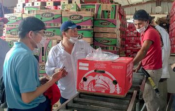 Funcionarios de sanidad de China recorren unidad de produccion de plàtano