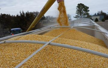 carga de maíz en tren