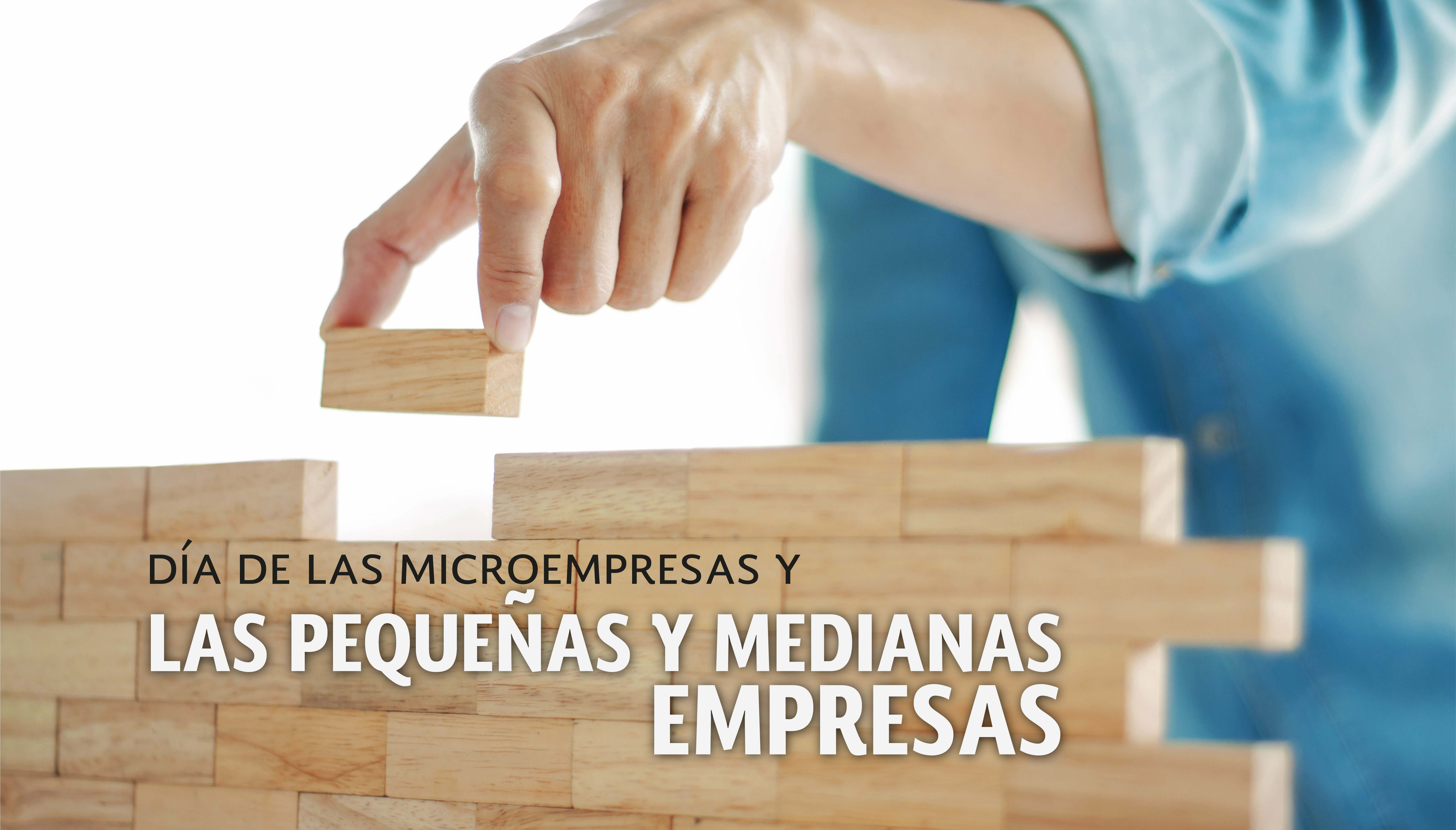Día de las microempresas y las pequeñas y medianas empresas