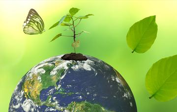 A 11 meses de su presentación, el PROAIRE ya tiene resultados relacionados con la sustentabilidad de los ecosistemas megalopolitanos.