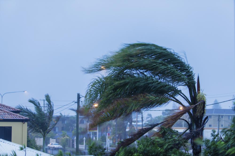 Esto es lo que debes hacer antes de un #CiclónTropical.