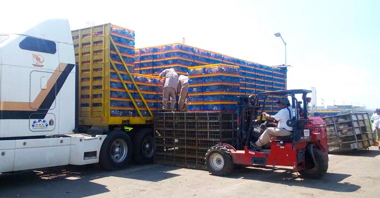 Oficiales inspeccionando camión