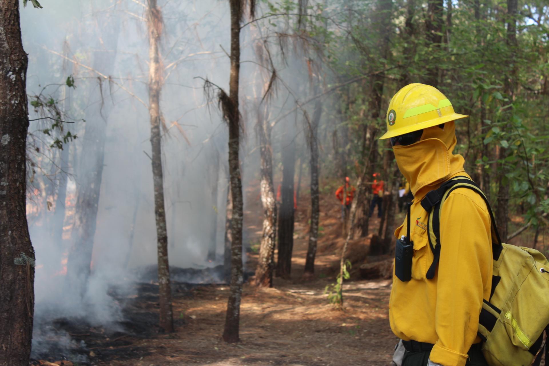 combatiente de incendios forestales frente a línea negra que contiene el fuego.