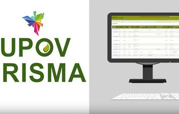 UPOV PRISMA herramienta digital para solicitudes de protección de variedades vegetales