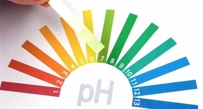 El equilibrio del PH en el organismo