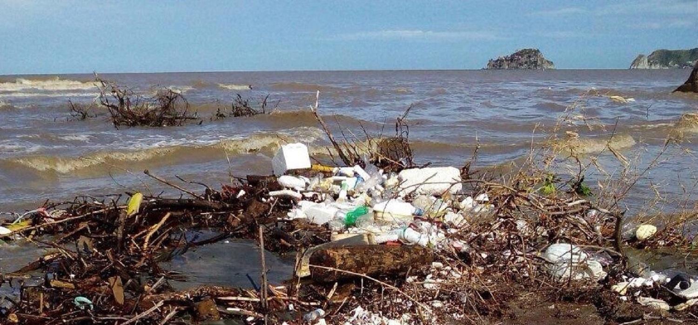 Vista general de desechos plásticos a orillas del mar.