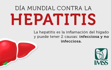 Los tipos de hepatitis más comunes son la hepatitis A, B y C.