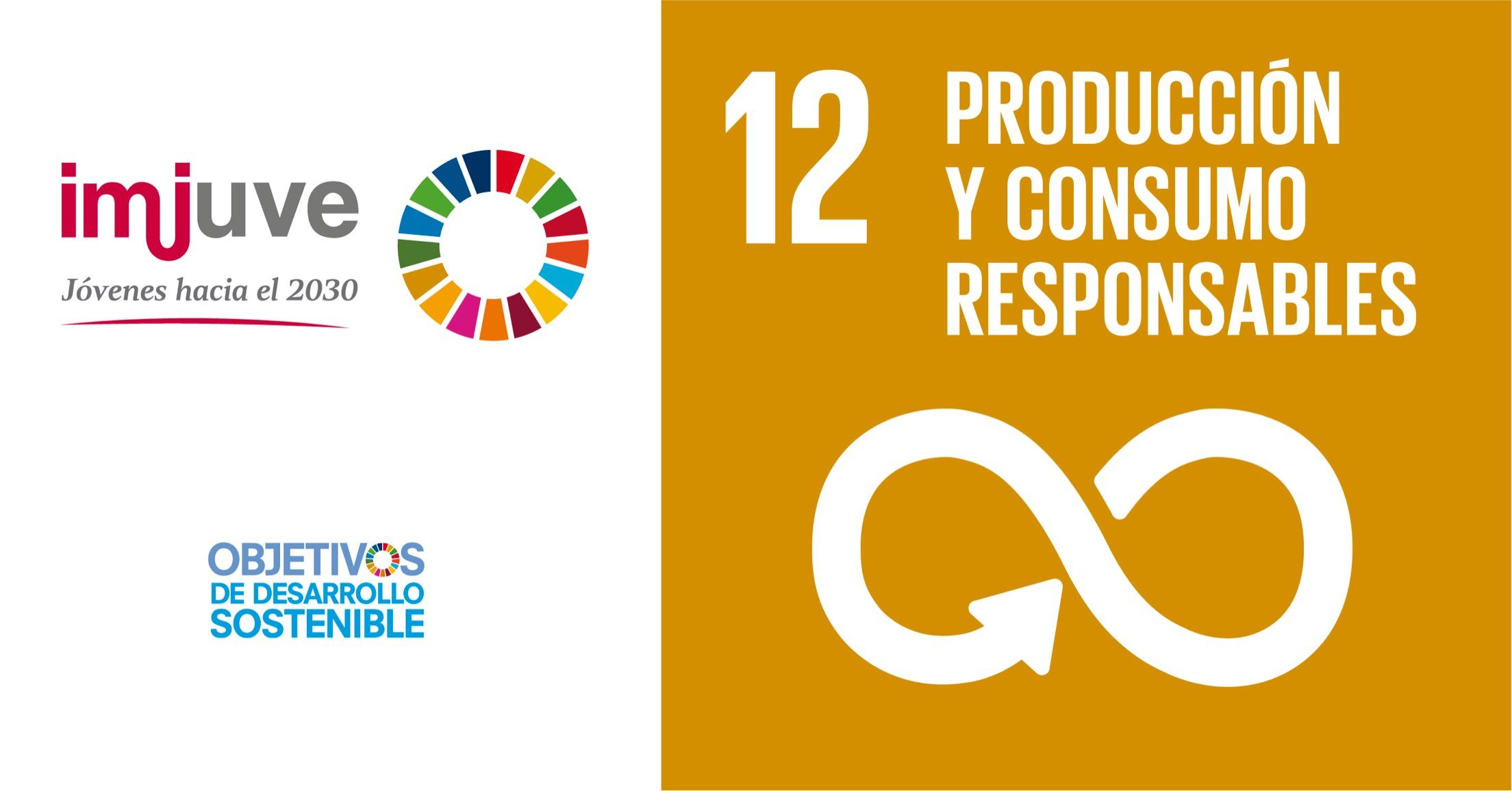 Objetivo de Desarrollo Sostenible 12