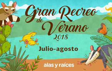 Banner del Gran Recreo de Verano, 2018.