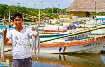 El método de pesca de esta especie es muy selectivo, por lo cual no se registra captura incidental.