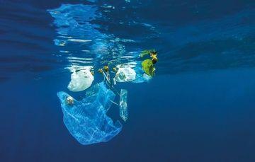 Imagen Ilustrativa: océano contaminado con desechos plásticos.