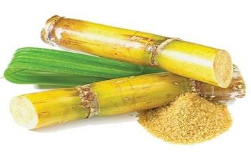 La producción de caña de azúcar supera las 55 millones de toneladas en 2018*