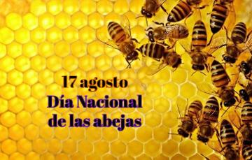 17 de agosto, Día Nacional de las abejas