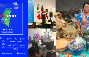 ¡Viva la cocina mexicana en Norteamérica!