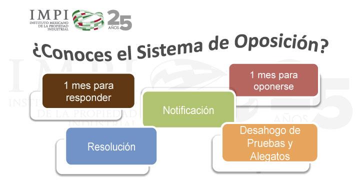 ¿Conoces el Sistema de Oposición?