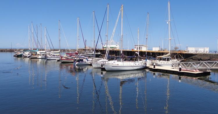 En esta imagen de la Marina FONATUR Santa Rosalía, una hilera de veleros y yates se atraca al muelle. En el agua, se reflejan los mástiles de las embarcaciones y un ave emprendiendo el vuelo.