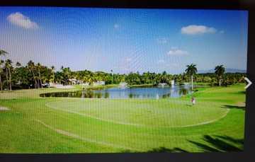 En esta imagen del Campo de Golf Palma Real, el green está conformado por un brillante pasto que se dirige a un lago rodeado de palmeras y a lo lejos unas construcciones se observan en la orilla. A la derecha, se prepara un hombre para un pot.