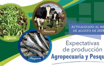 La expectativa de producción nacional agropecuaria y pesquera para agosto 2018, es de 229 millones de toneladas