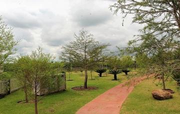 Camino del arboretum donde se aprecian árboles y algunas palmas.