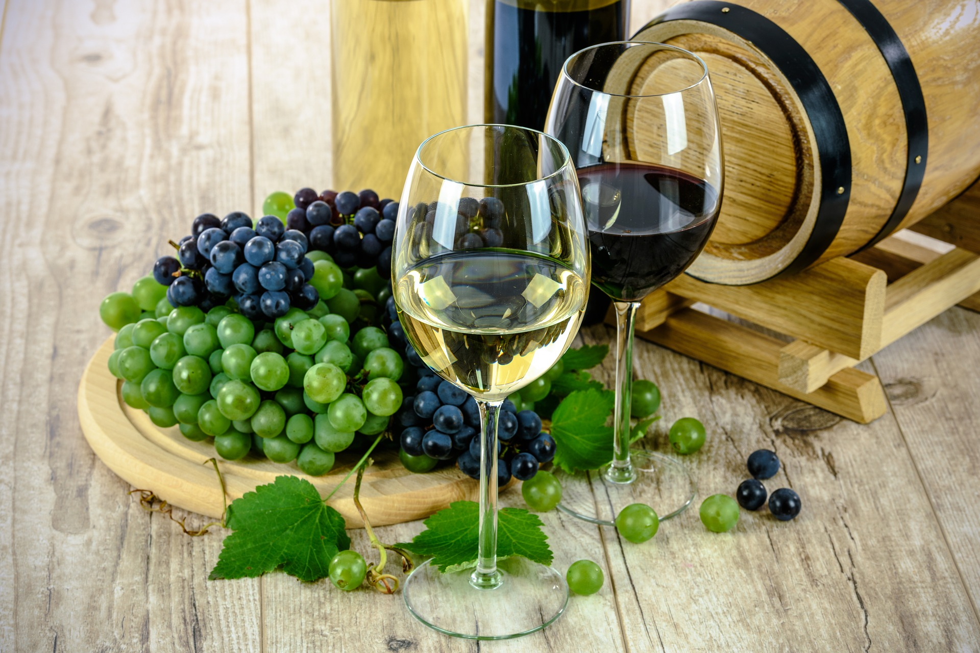 uvas moradas y verdes detrás de dos copas una con vino blanco y otra con vino tinto