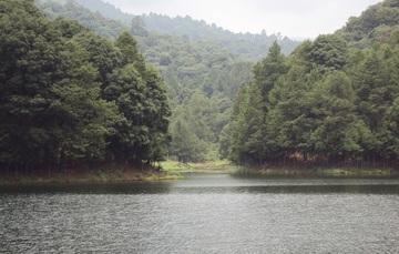 Paisaje de bosque y lago en Edomex