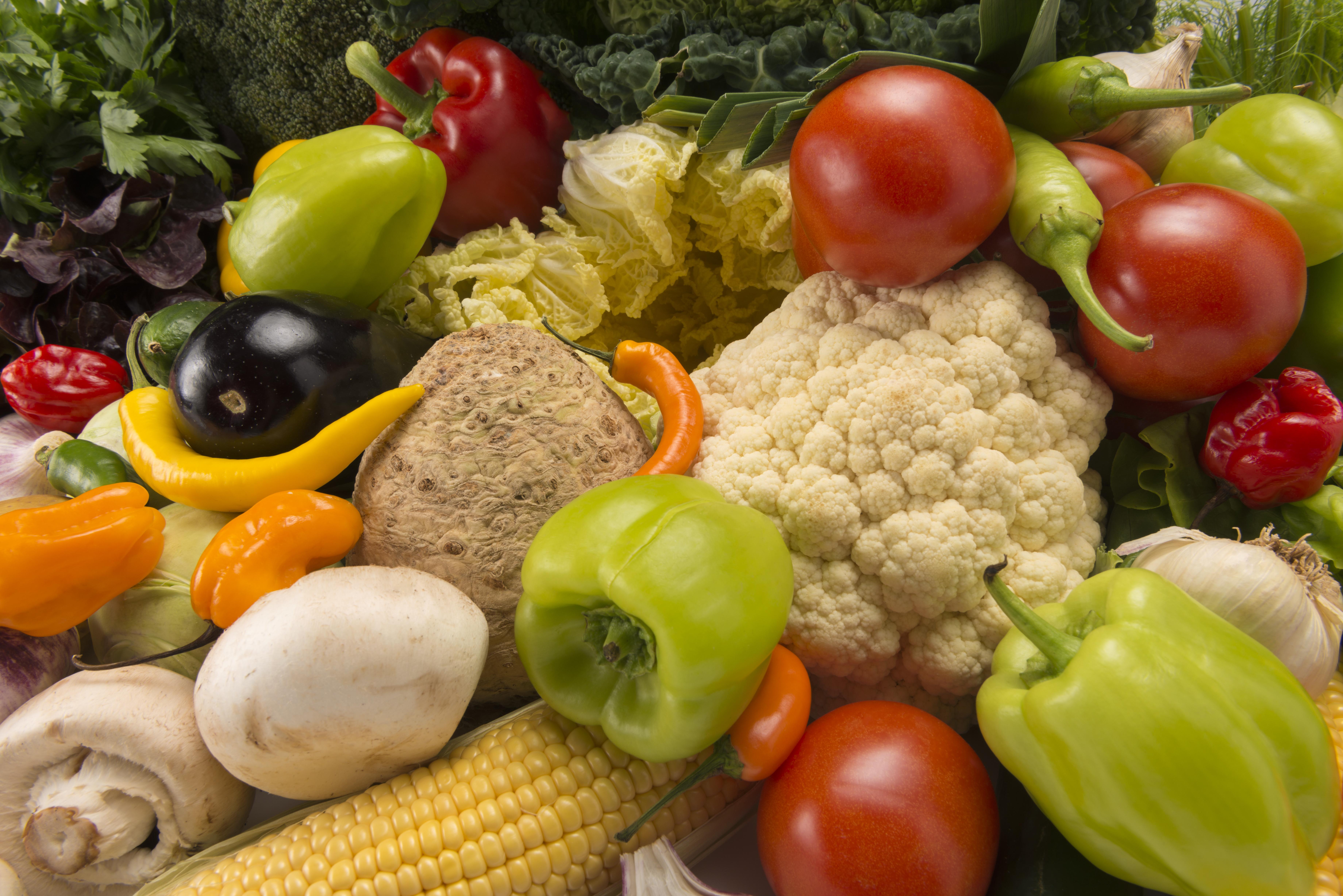 Alimentos agrícolas