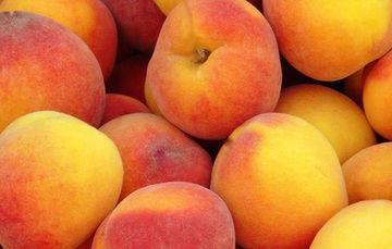 ¡Bienvenidas las frutas y verduras de otoño e invierno!