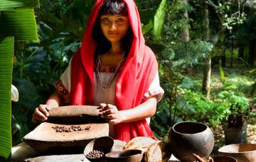 Cacao mexicano, fuente de nutrición, salud y belleza