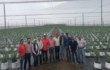 Fortalece FIRA la agroindustria en el oriente de Michoacán