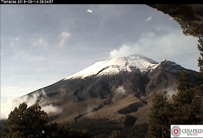 En las últimas 24 horas, por medio de los sistemas de monitoreo del volcán Popocatépetl se identificaron 84 exhalaciones acompañadas de vapor de agua, gas y ligeras cantidades de ceniza, así como cinco eventos volcanotectónicos y 130 minutos de tremor.
