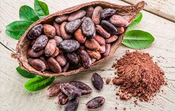 La producción de cacao en 2018* es de 28.4 mil toneladas;  3.9% mayor que lo obtenido en 2017