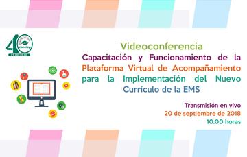 Videoconferencia: Capacitación y Funcionamiento de la Plataforma Virtual de Acompañamiento para la Implementación del Nuevo Currículo de la EMS