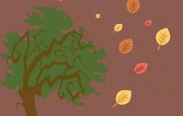 foto de otoño