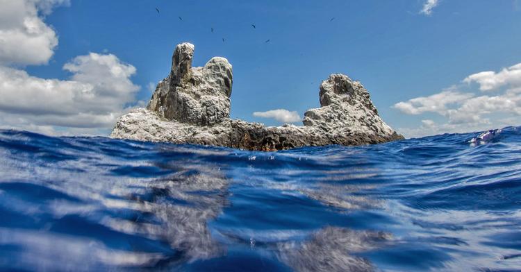 Las áreas naturales protegidas contribuyen a la salud de los océanos