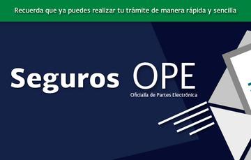 imagen que hace referencia a seguros en OPE
