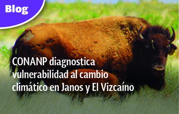 CONANP diagnostica vulnerabilidad al cambio climático en Janos y El Vizcaíno