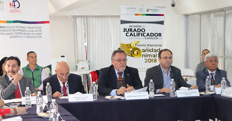 Jurado calificador