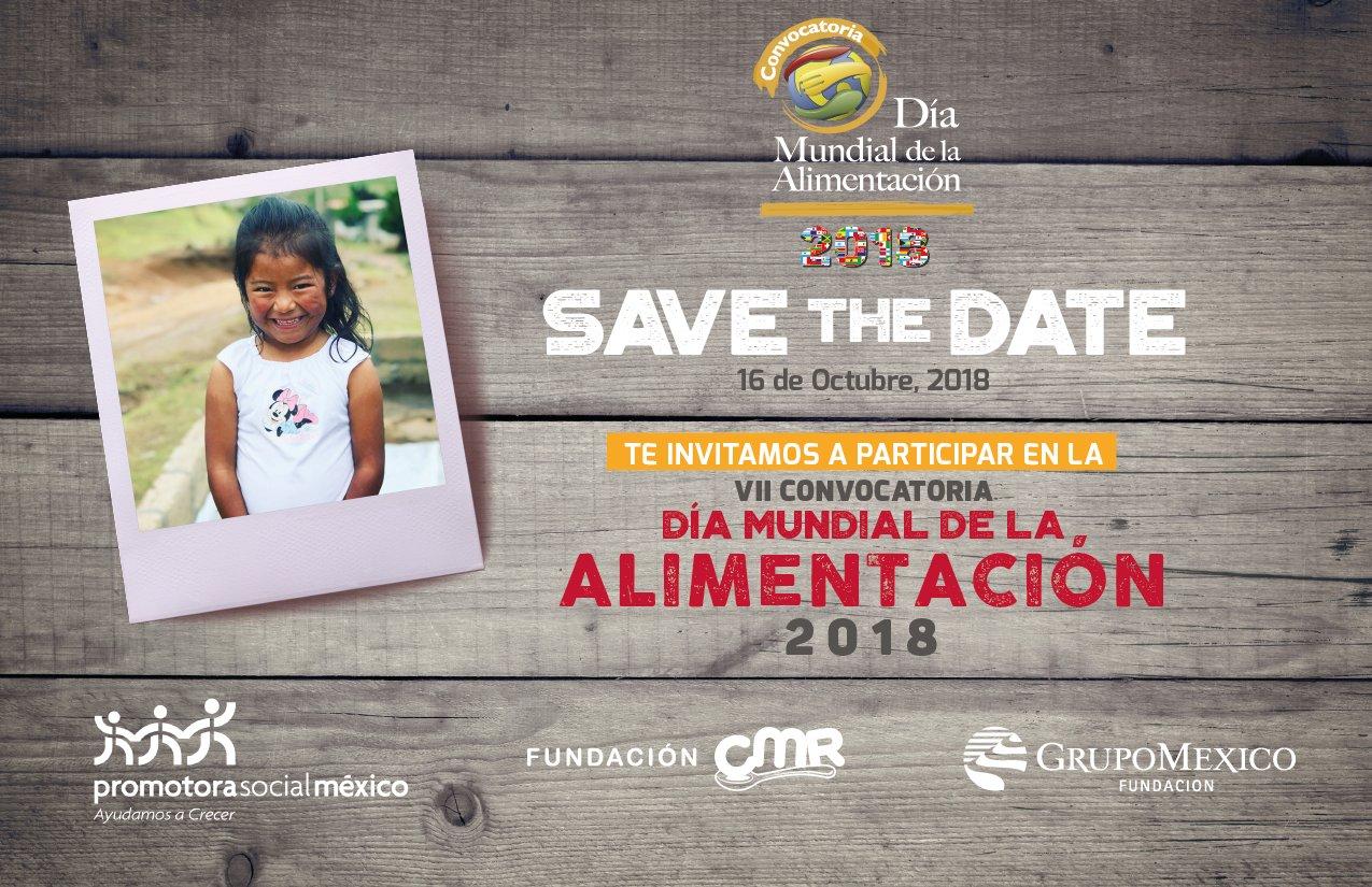 Todos los proyectos presentados por las organizaciones participantes en esta convocatoria deberán atender, la temática de alimentación y combate de la desnutrición en población infantil