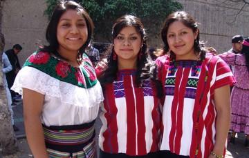 Licenciatura en Educación Indígena (LEI).