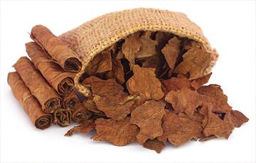 El estado de Nayarit se consolidó como el principal productor nacional de tabaco en 2017,  con 89.6% del volumen total