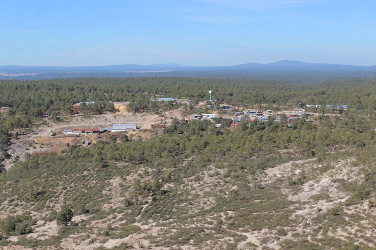 Paisaje forestal del aserradero de Caborachi.