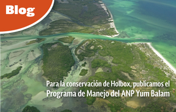 Para la conservación de Holbox, publicamos el  Programa de Manejo del ANP Yum Balam